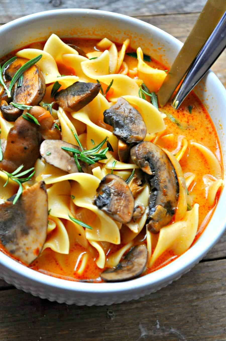 Vegan Wild Mushroom Stroganoff Soup - Rabbit and Wolves